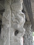 Close up view of a pillar - Vahana Mandapam