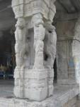 Pillar in Vahana mandapam